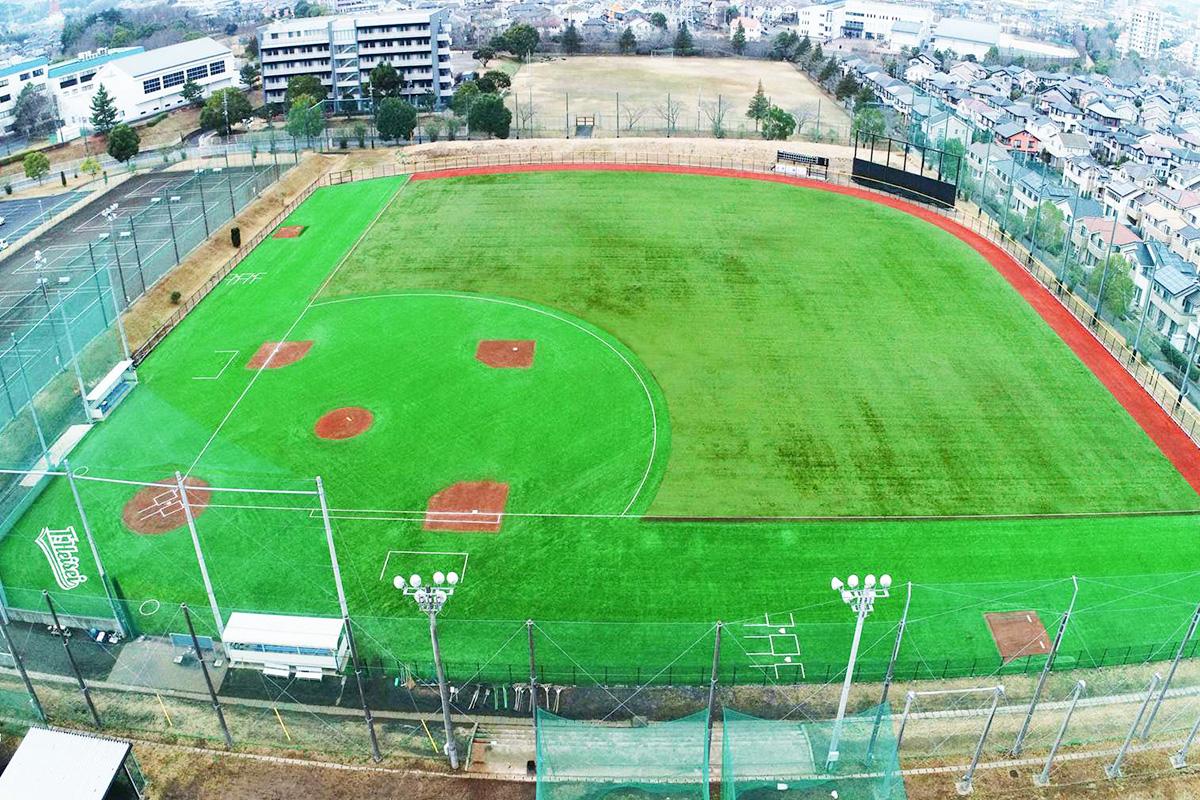 大学 部 帝京 野球
